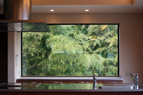 The Momiji & Bamboo House 2010